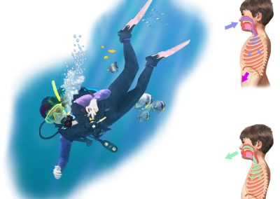 Illustration of scuba diver and diagram of breathing