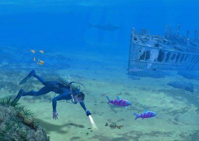 Shipwreck & Diver