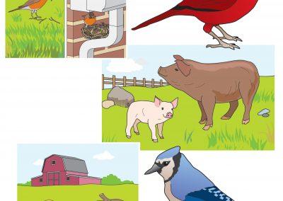 Vector Animals 2